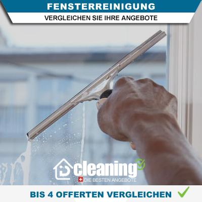 Reinigungsofferten Fenster in Bern